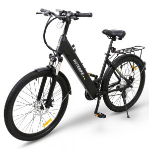 Professional in electric bicycles