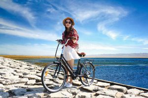What is Electric Bike