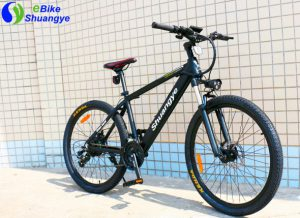 What are the safety requirements for electric bikes
