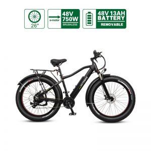 "26"" 48V 750W Hidden Controller Fat tire mountain electric power assist bike (A6AH26F-48V750W)"