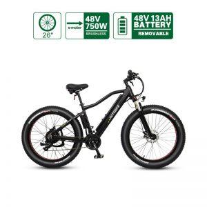 48V 750W fat tire mountain electric bike (A6AH26F-48V750W)