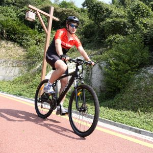 European Popular Electric Mountain Bike with 250W motor in HOTEBIKE
