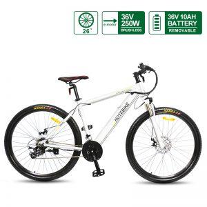 Ina Bike Tita European 26inch White Alloy Frame Electric Mountain Ebike A6AH26
