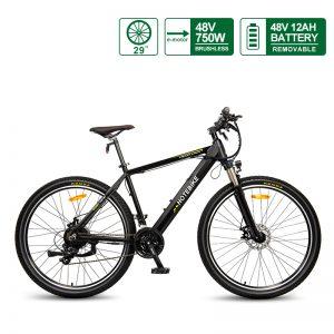 48V 750W electric powered bike 29*2.1 inch specialized electric bike for sale A6AH26