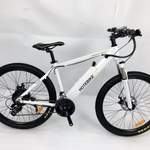 Adult Electric Mountain Bikes 48V 750W High-power 26*1.95 inch (A6AH26-48V750W)