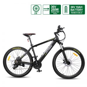 Bafang mid motor electric mountain bike