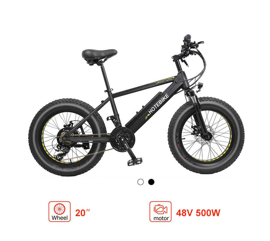 electric fat bike canada