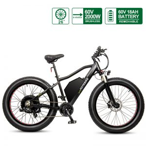 60V 2000W Fat Bike Electric Giant Electric Bike Snow Bicycle (A7AT26-60V2000W)