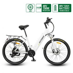 26 inch electric bike city bike mountain bike for adults (A5AH26-48V750W)