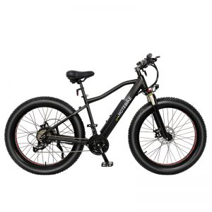 750w high power fat tire electric bicycle