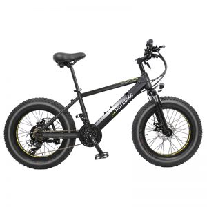 20 inch fat tire beach snow electric bike