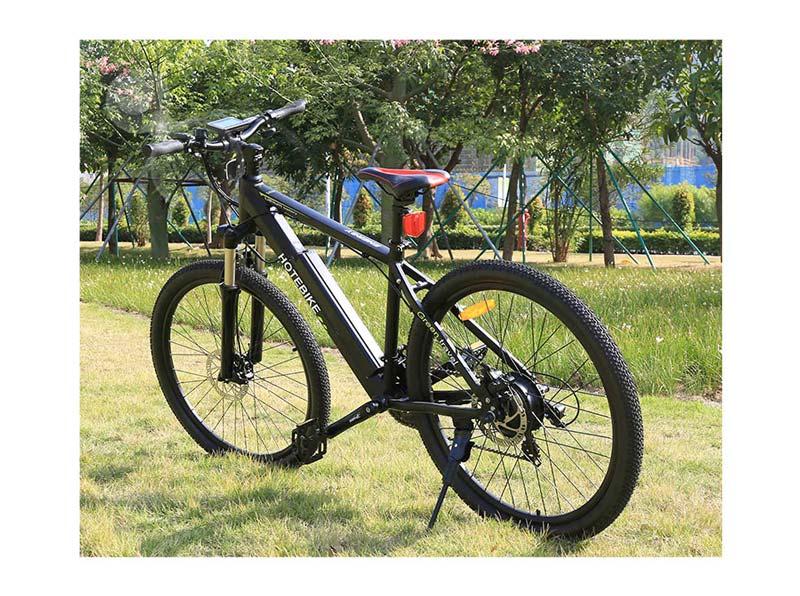 pedal assist electric bike