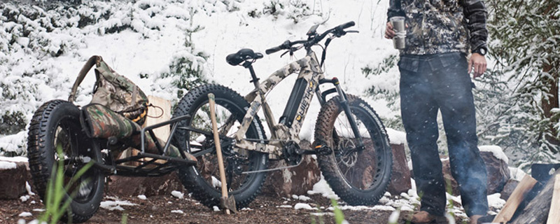 fat tire beach snow electric bike