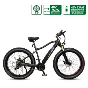 48V 750W Fat Tire Electric Bike Powerful Mountain Bike with 13AH Battery A6AH26F