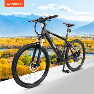 What is the best electric assist bike