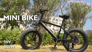 Fat Tire Electric Bike A6AH20F Video