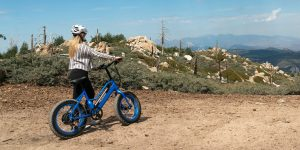 Pedego Element launched as company's lowest priced electric bike ever