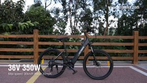 Electric Bike linnaratas l E BIKE A5AH26 350W