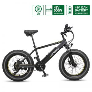 20 inch Mini Bike Electric Fat Bike Canada Beach Bicycle (A6AH20F-48V500W)