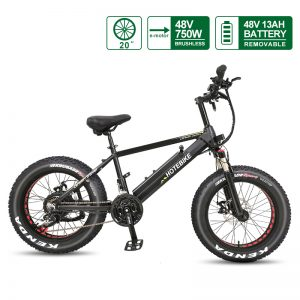 [Fast Delivery] 20 inch Fat Tire Electric Bike 48V 750W Motor with 13AH LG Battery A6AH20F