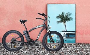 Ecotric Fat Tire Electric Bike Review & Purchasing Guide