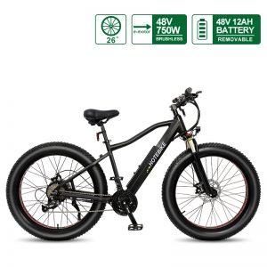 48V 750W Fat Tire Electric Bike Powerful Mountain Bike with 12AH Battery