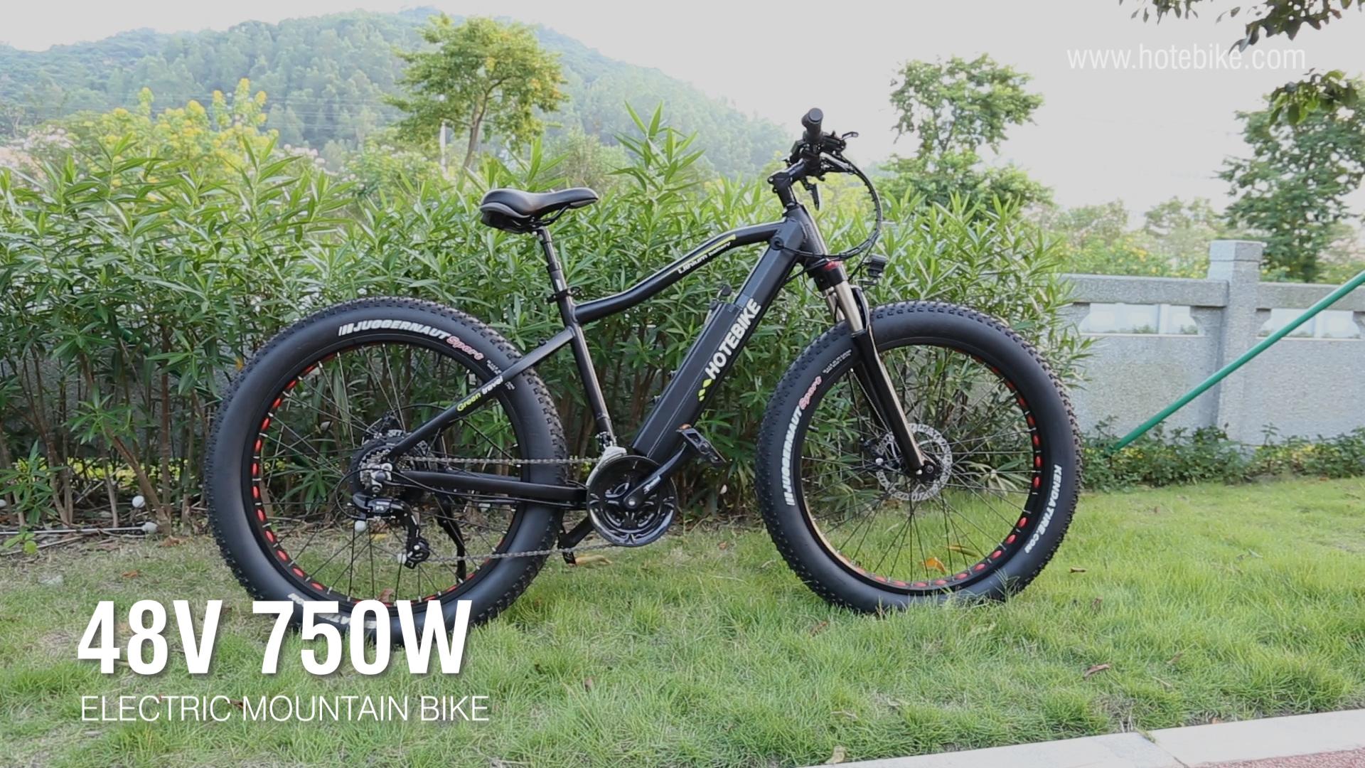 48V 750W Fat Tire Electric Bike Powerful Mountain Bike A6AH26F