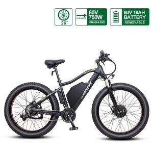 60V 750W Dual Motor Electric Fat Bike HOTEBIKE Fat Tire Bike