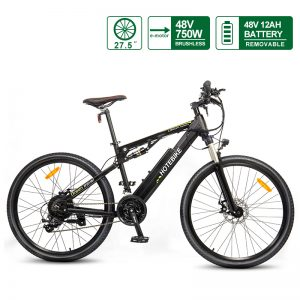 Full Suspension Electric Bike 750W Mountain bicycle with Quick-release Battery