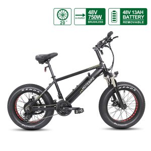 Fat Tire Electric Bike 20*4.0 48V 750W Motor with 13AH Battery A6AH20F