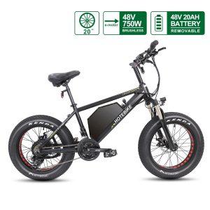 Fat Tire Electric Bike 20 inch Tire 48V 750W Motor 20AH Battery A6AH20F