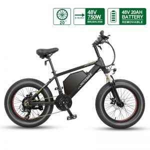 Fat Tire Electric Bike 20 inch frame 4 inch tire 48V 750W Motor 20AH Battery A6AH20F