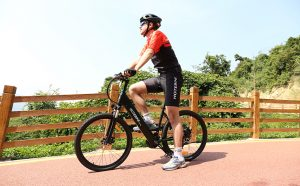 Advantages and Disadvantages of an lectric ebike